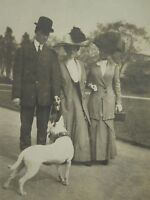 ANTIQUE EDWARDIAN DOG LOVERS OWNERS WHITE AMERICAN PITBULL COLLAR ARTISTIC PHOTO