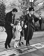 Julie Andrews Dick Van Dyke & children jumping Mary Poppins 24X30 Poster