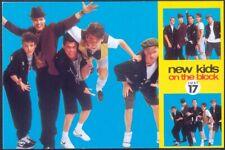 Modern Postcard: NEW KIDS ON THE BLOCK (Ref: Just 17). Free UK Postage