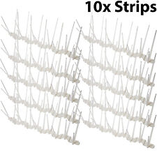 10x 33cm x 11cm CUT TO SIZE Clear Anti Bird/Pigeon Spikes-Window Ledge Roof Wall