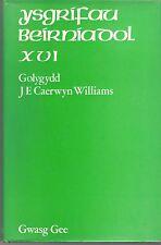 Y Storiwr Gwyddeleg by J. E. Caerwyn Williams (Hardback, 1972)