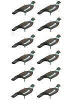 Pigeon Decoy Shells High Definition Decoying Shooting HD Painted Decoys with Peg