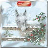 Pack of 8 Donkey Medici Charity Christmas Cards Supports Multiple Charities