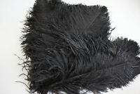 10 Black second grade ostrich wing plumes 28-35 cm (11-14 inch )