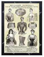 Historic Madame Dowding Corsets for men Advertising Postcard