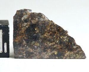 Meteorite NWA 11640 - Achondrite Ureilite diamond rich - nice Slice 1.28g