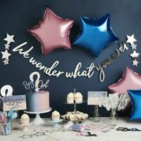 Gender Reveal Party We Wonder What You Are Baby Shower Star Bunting Banner