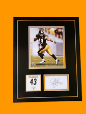 Troy Polamalu autograph 11x14 Photo