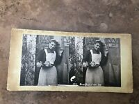 victorian stereoview -  mary maid of the inn !