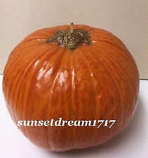 """Pottery Barn Large Pumpkin Candle 5"""" x 7""""L"""