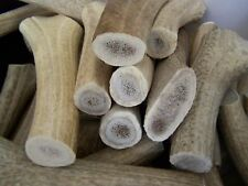 """2 Jumbo Shed Elk Antler Dog Chews Treats 8"""" USA SHED ANLTER Teeth Cleaner"""
