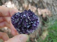 Natural Raw Amethyst Quartz Geode Druzy Crystal Cluster Healing Specimen A++