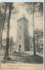 CP 88 Vosges - Bruyères - Le Mirador sur la Têtede l'Avison
