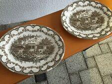 Servierplatten Porzellan oval braun  *gebraucht*