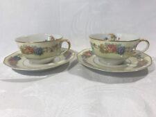 Theodore Haviland Limoges France AZAY LE RIDEAU Set of 2 Teacups & Saucers