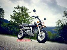 Skyteam Sky Team 50 Gorilla Schwarz Minibike perfekt für Camping / Netto €1290,-