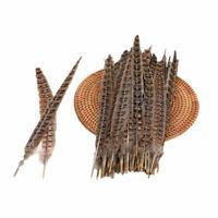 20Pcs Natural Pheasant Tail Feathers 12-14 Inch Long Craft Party DIY FA