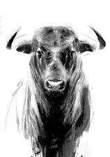 Powerful Spanish Bull Toro Cow Natural Farm Modern Country  Canvas Print A3