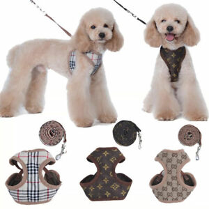WOW! DOG - PUPPY Designer HARNESS and LEAD SET -  (NOT) BURBERRY / LV / GUCCI 5*