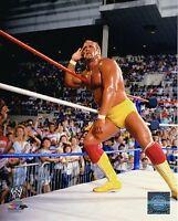 "WWE PHOTO HULK HOGAN 8x10"" OFFICIAL WRESTLING PROMO WWF"
