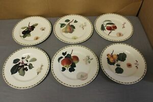 """Queens Fine Bone China """"The Royal Horticultural Society"""" Fruit 6 Salad Plates"""