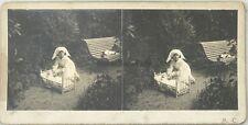 Jeux d'enfants Infirmier Poupée Snapshot Photo signée A. C. Stereo Vintage A