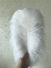 Wholesale, 10-100pcs special color ostrich feathers 6-24inches/15-60cm  6 colors