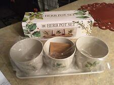 New Herb pot set-herbs
