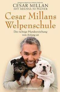 Cesar Millans Welpenschule: Die richtige Hundeerziehung ...   Buch   Zustand gut