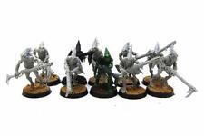 Warhammer 40k Tau Empire Kroot Carnivore Squad (w4066)