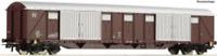 Roco 76496 HO Gauge FS Gabs Long Wheelbase Van IV