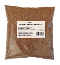 Lawn Pro 1Kg Special Blend Budget Lawn Seed Sows 35sqm Landscapers Favourite