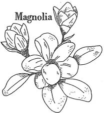 Unmounted Rubber Stamp, Flowers, Floral Stamps , Magnolia, Botanicals, Nature