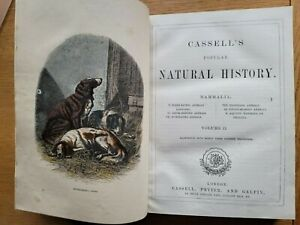 Cassell's Popular Natural History MAMMALIA  Vol.II - DOGS, CATS,  FOXES, BOVINE