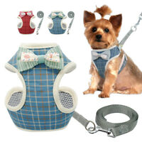 Mesh Padded Dog Harness and Lead Pet Puppy Cat Vest for Small Medium Dogs Yorkie