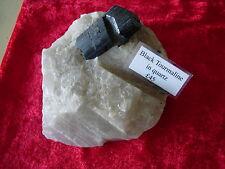 black tourmaline in quartz specimen
