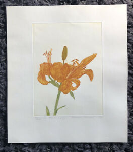 """NORMAN STEVENS RA 1937-88 Limited Ed ETCHING """"First Lily"""" 73/200 '79"""