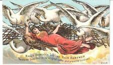 "RARE 1882 TRADE CARD HALL'S HAIR RENEWER NASHUA, NH ""ELSIE & THE WILD SWANS"""