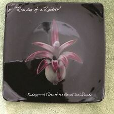 Tiki Farm Black Ceramic Hawaiian Floral Plate Remains of a Rainbow