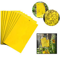 20/50/100Pcs Sticky Fly Trap Paper Yellow Traps Fruit Flies Insect Glue Catcher