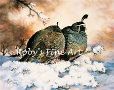 """Limited Edition Valley Quail """"Quiet Romance"""" Wildlife Art Print By Roby Baer PSA"""