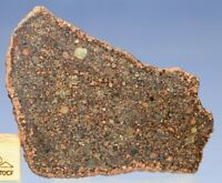 L3  Chondrite Meteorite - NWA 12341 Type 3 With amazing chondrules- full Slice