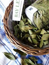 Organic BAY LEAVES dried English - culinary/medicinal/crafts/pot pourri 100 gr+