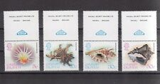 TIMBRE STAMP 4 ILES CAYMANS Y&T#451-54 COQUILLAGE SHELL NEUF**/MNH-MINT 1980~A71