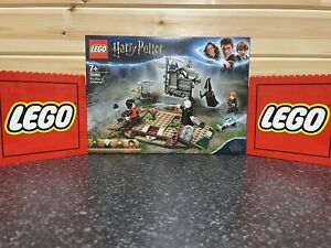 Lego Harry Potter The Rise of Voldemort 75965 - Brand New-perfect Condition