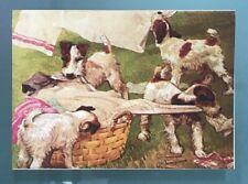 4 of the same Blank Greeting Cards by Albert Staehle  VINTAGE! Fox Terriers
