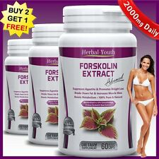2000mg Daily FORSKOLIN PILLS Pure Coleus Forskohlii EXTRACT Standardized 20%