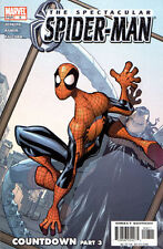 Spectacular Spider-Man Vol. 2 (2003-2005) #8