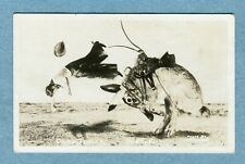 A1805Postcard Very Large Rabbit Bucking Rider From Saddle and Off