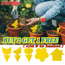Sticky Fly Trap Paper Set Traps Fruit Flies Insect Aphids Glue Catcher Yellow Us